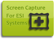 "If you have an ESI phone system with automatic call recording (call logging), you can add screen capturing and get ""movies"" of the employee's PC screen activity along with their phone conversation."